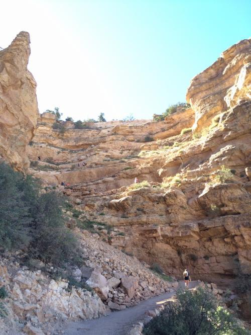 Cedar Ridgeからの帰り。あと少し、この岩壁を上りきればトレイル終了。途中、日陰になっているところが多く、そんなに暑くなかったので、思ったより楽に帰って来れた。