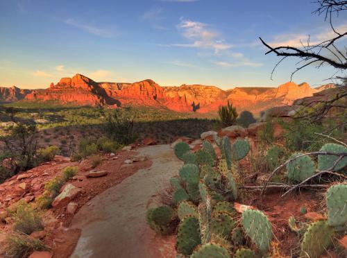 座って休憩しながら何気なく撮った一枚。手前にサボテン、遠くに赤い山々。すごくアリゾナっぽくセドナっぽい写真が撮れた。気に入ったのでこの旅行記の表紙に採用。<br />景色を楽しみながらトレイルをゆっくり歩いて、日が落ちる頃に駐車場に戻ってきた。所要約2時間。大満足。