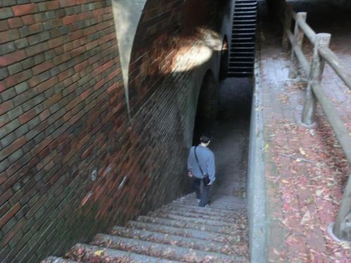 階段を下りてみる。<br /><br />遠くに波の音が聞こえるが、そのほかに物音は無し。<br />我々の他には、展望台に女性が1人いるだけだ。<br />