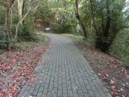 レンガの道。