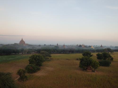 朝もやの中の仏塔もいい感じ
