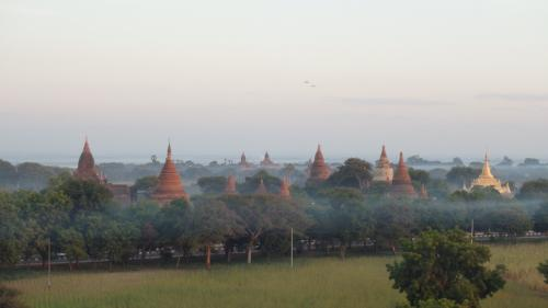 朝もやの中の仏塔