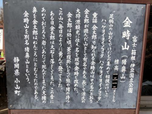 金時山の説明が…標高が訂正されています。1213m→1212m<br /><br />江戸時代に「金太郎伝説」ができ、その後明治33年に童謡「金太郎」<br />が作られ、広く知れ渡るようになったらしい。