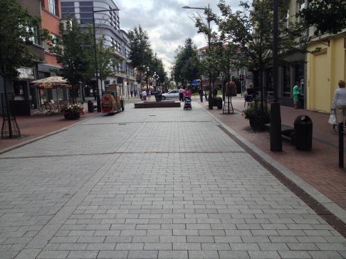 シャウレイの町はそれほど大きな町ではないものの、それまで走ってきた ド田舎町とは異なり、突然車も人も増えてにぎやかな町だった。 街の目抜き通りのヴィルニアウス通りに観光インフォがあって、 その付近に車を停めて少し散歩してみることに。通りにはオシャレな オープンカフェが並んでいて、昼時だったこともあって、たくさんの人が のんびりした時間を過ごしていた。 <br /><br />ラトビアの通貨は最近になってユーロになっていたので、幾分ユーロは 持っていたが、ここリトアニアの通過はリタス。リタスは持ち合わせて いなかったので、観光インフォでATMの場所を聞いた。ついでにリトアニア料理が 食べられるレストランを聞いてみたところ、ガイド本(るるぶ バルト三国)に 載っている店をおもっきし紹介されたので、そこに行くことにした。 <br /><br /><br />(写真:目抜き通りのヴィルニアウス通りは歩行者天国になっていて、かなりオシャレな通りだった)