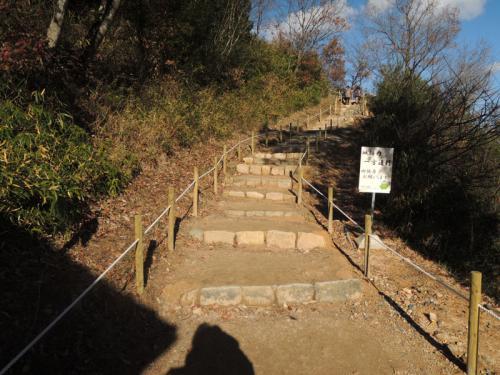 入場料三百円を払って竹田城跡に続く階段を昇る。この階段を昇れば、竹田城跡に着くのだ。