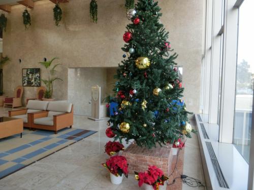 本館ロビーに飾られたクリスマスツリー(写真)。この横にサンタの赤い衣装がある。2才になる孫を連れてくれば妻は喜び勇んで孫を真っ赤なサンタに仕上げるであろう。