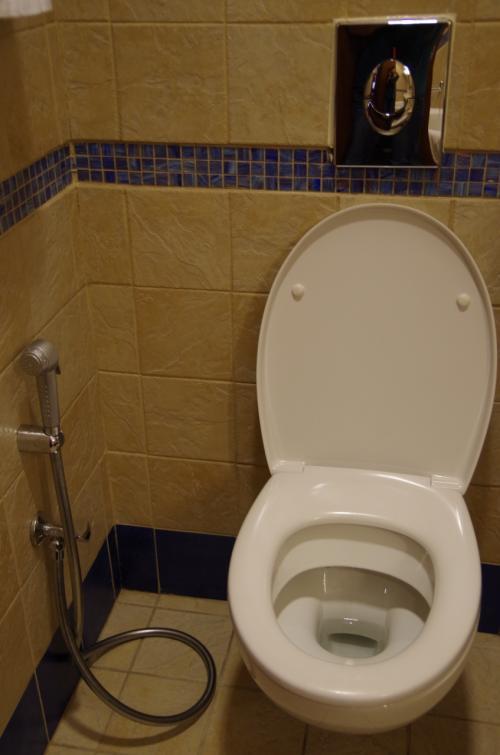 でも、やっぱりこのスタイルのシャワー付きトイレ。