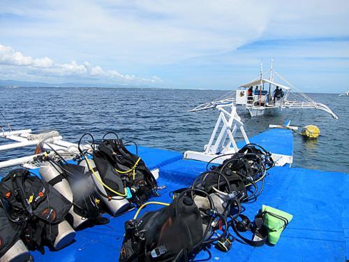 潜水の準備は全てお店のスタッフがやって頂くので、お殿様・お姫様ダイビングと云われています。エンディングも全てサポートしていただけるのでダイバーとしてはこれ以上の楽はない。他では見られないサービスである。