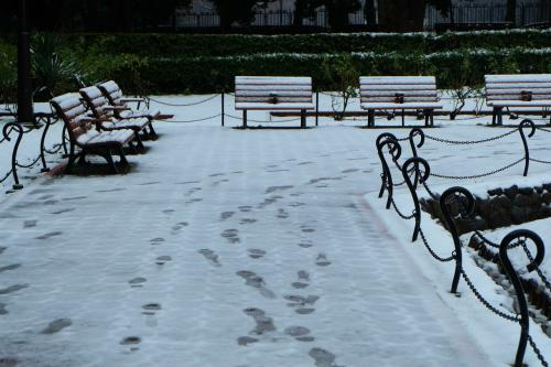 人のいない 日比谷公園<br /><br />      第一花壇