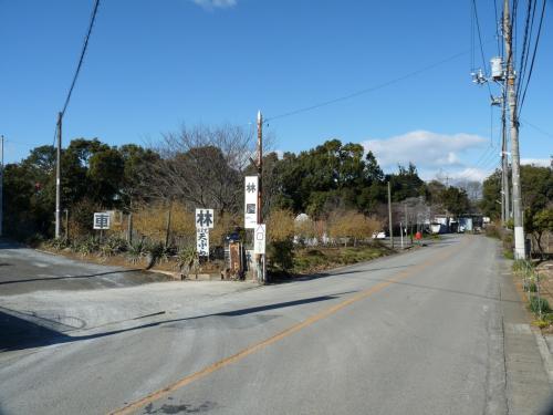 右へ曲がると、雰囲気がローカルになります。<br /><br />写真の中央の奥、道の左側が、雷電神社の駐車場です。<br /><br />写真の中央、林家さんの看板の向こう側に、ロウバイが植えられています。