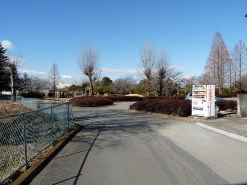 「左、公園駐車場」の案内に従って左折すると、正面に公園が見えます。<br />写真中央の植え込みの間を入ると、板倉町中央公園の東駐車場です。