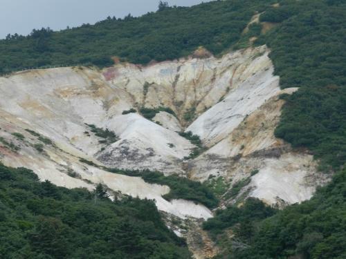この部分が特に植物が生えていませんね。<br />岩の成分のせいなのか、崖崩れ等のせいなのか...?