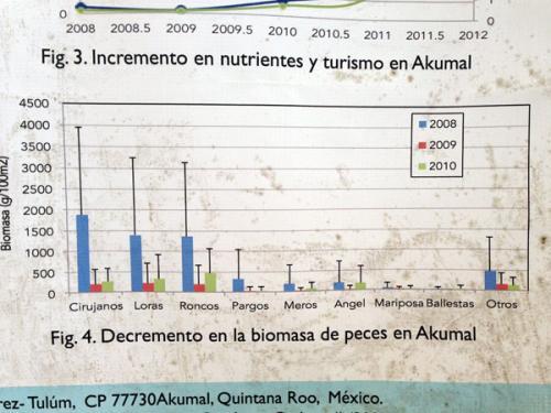 各海洋生物の絶対数の減少を示すグラフ。<br /><br />2008年から2010年の3年間だけでも、激減しているのが分かります。
