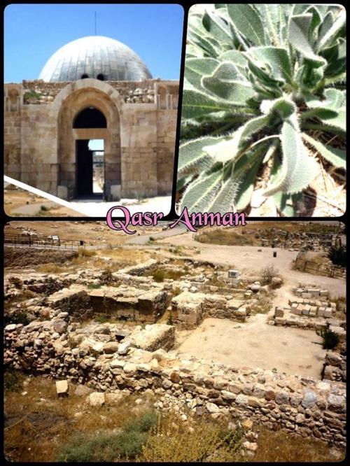 ローマ帝国時代の神殿跡と博物館<br />高台から下にはローマ劇場跡も見えたヨ