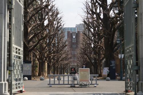 正面には、シンボルの安田講堂が見えます。