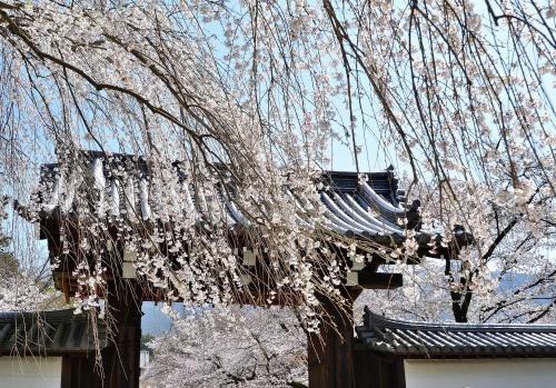醍醐寺 総門<br />上醍醐も含め、醍醐寺の境内入口となるのがこの総門です。<br />それなりの風格はあるものの、寺の規模から察するに小ぶりで控え目な感じのする門です。