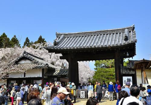 醍醐寺 三宝院(さんぼういん)<br />三宝院は、1115年に醍醐寺第14世座主 勝覚僧正が創建し、当初は密教儀式殿院「灌頂院(かんじょういん)」と呼ばれましたが、後に仏教の三宝に因んで「三宝院」に改名されました。歴代の座主を輩出する五門跡のひとつとして栄え、1428年以降は座主の職を独占して一山を支配していました。しかし、応仁の乱で焼失し、廃寺同然となりました。この荒廃した醍醐寺を立て直したのが、義演准后(ぎえんじゅご う)です。往時、義演は「金剛輪院」を改修し、そこに居住していました。秀吉の庇護を受けて醍醐寺を再興し、金剛輪院の建 物や庭を座主の居住するに相応しい風格のものに造り替えました。その結果、金剛輪院は「三宝院」の名を受け継ぎ、今に至っています。