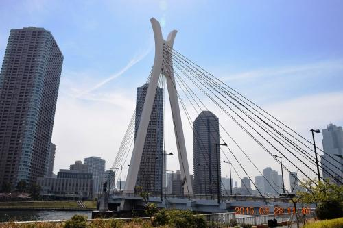 亀島川を渡った反対側から見た中央大橋です。