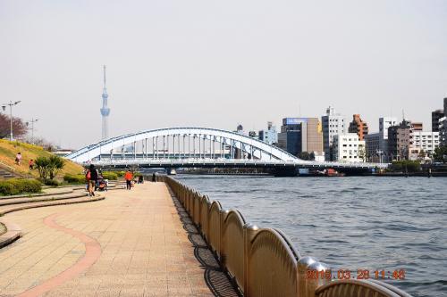 隅田川テラスは歩行者専用の遊歩道なんでジョギングや散歩、弁当を食べたり、昼寝している人達をたくさん見掛けます。<br /><br />永代橋とスカイツリーが見えてきました。<br /><br />