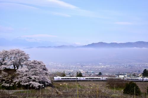 桜並木の先には、遠く南アルプスの山々も見渡せてこれまた素晴らしい風景