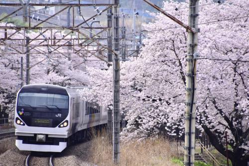 つい先日、ようやく新たにカメラを購入いたしましたので、その試し撮りも兼ねて満開な桜の風景がまだ残っている場所を探し求めて、たどり着いた場所がここ勝沼ぶどう郷駅の桜でありましたw