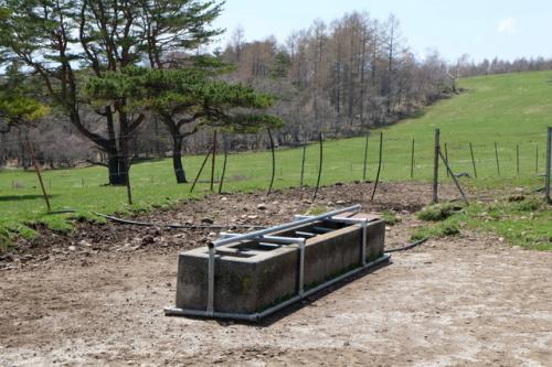 「県営八ヶ岳牧場」は、5月から11月初旬にかけて、牛が放牧されます。<br />写真は牛の水飲み場です。