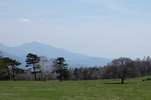 振り返ると、富士山!<br /><br />この日は春霞で、薄っすら見えました。