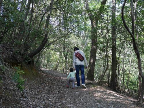 3号線は小高い丘を登る、くらいのイメージでしょうか?<br /><br />2歳児でも危なげなく歩けるくらいの斜面です。<br /><br />落ち葉や枝を踏みながら歩くと、パキパキシャカシャカいろんな音がするので、こどもはとても喜びます。<br />