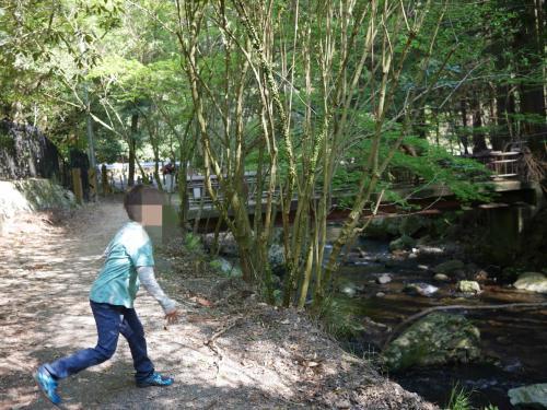 川を見たら、石や小枝を投げたくなる7歳少年…。<br />ふと周りを見渡すと、川におりてくるオオルリという青い鳥の写真を撮るために立派なカメラを持った方たちが数人おられました。<br />ごめんなさい!!<br /><br />この日はオオルリには出会えませんでした。<br />見てみたいな♪