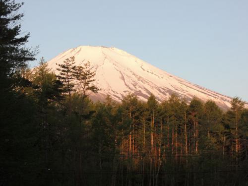 朝、起きて部屋の窓を開けてみると、何と何と、富士山が見えていた!