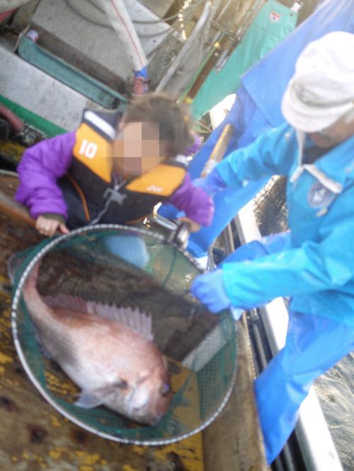 鯛は一匹ずつ網ですくいあげます。<br />大きな鯛!<br />興奮しすぎて、ピンぼけ…(泣)