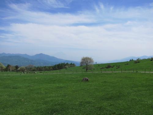 広大な牧草地は日本離れした風景!<br />写真家・吉村和敏さんはニュージーランドの様と言ってました。<br />