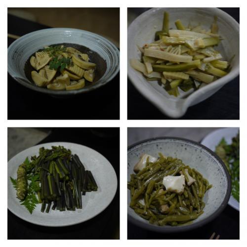 夜ごはんは囲炉裏でアマゴやサザエ、猪肉を焼いてもらいました。<br />そして、大将が採ってきた山菜のお料理色々。どれも優しく旬のお味!!<br />