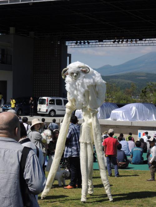 背の高い羊。「めえええ」と鳴いていた。