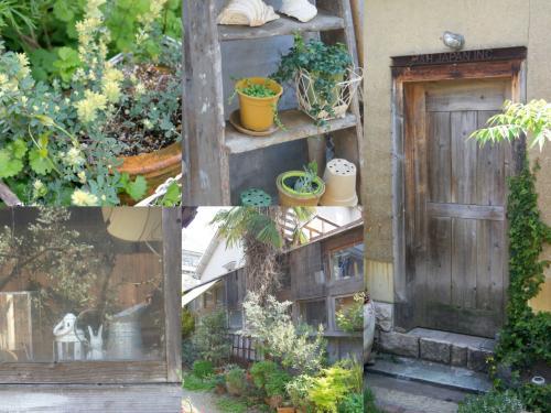 好き。植物沢山な場所はいい。