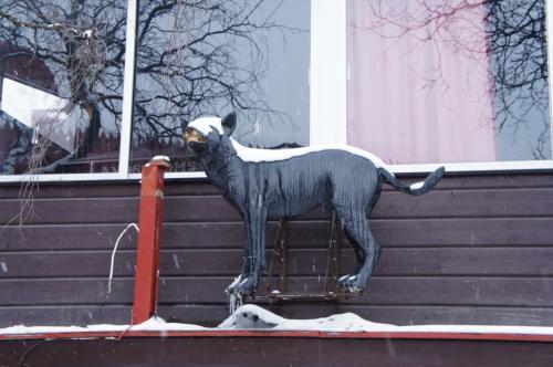カントリー・キッチン&バー(Landströms Kök & Bar)と協会通り(Föreningsgatan)<br />キルナの所々に、犬のパネルがあります<br /><br />http://www.landstroms.net/