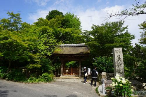 湖南市には、国宝の寺が三つあって、この長寿寺もその一つ。位置関係からすると常楽寺から回った方が効率が良かったのですが、常楽寺の開くのは10時から。こちらは9時なので、こちらを先にした次第です。<br />