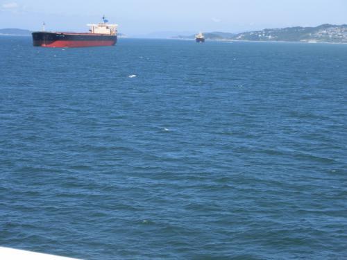 これは淡路島側<br />しゃばしゃばーと波を切る音が聞こえて瀬戸内海風