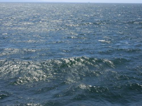 当日の天気予報は「波の高さ うねりをともなって2メートル」でしたが、波をよくみると、山脈のように見えてきて、しかもそれがはてしなく続いていて、しかもそれぞれが生き物のように動いて(波だからあたりまえ!) 、底知れぬ海パワーを感じました。<br /><br />きみたちはどこから押し出されてくるんだ?!