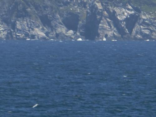 ギザギザしたものが見えたのでズーム。岩が三角縁鋸歯紋 @@!<br />でも、鋸歯紋島(きょしもんとう)ではなくて、沼島(ぬしま)