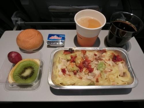 名古屋からドイツ・フランクフルトまでの飛行時間は約12時間もある。狭いエコノミー席で如何に快適に空の旅を過ごすか?幸い、この便は昼間のフライトなので夫婦ともに元気いっぱいだ。機内食をゆっくり楽しみ、妻とおしゃべりをし、時々読書をする。そして、眠くなれば仮眠する。<br />写真:2回目の機内食