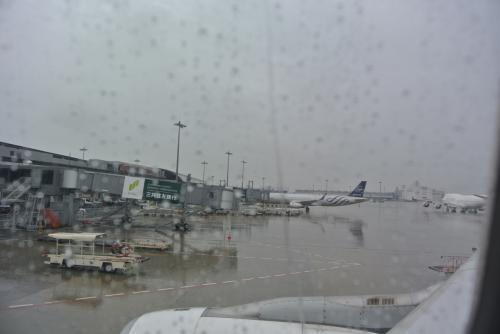 雨・・・むこうのお天気大丈夫かな。