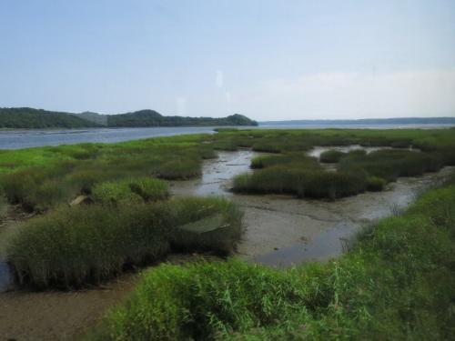 厚岸湾に流れ込む別寒辺牛川河口<br /><br /> ◎湿原の成長する過程がわかります。 土砂やスゲ、ヨシ、アシなどの湿性植物が湾を埋めていきます。 道東の湿原はまず砂州、砂嘴の発達により内湾や湖の生成に始まります。 やがて陸地の上昇(海退)により海水の汽水・淡水化、そしてスゲ、ヨシなどの湿性植物が繁茂し、それらが冬季寒さのため腐敗せず、年々重なって泥炭化し、湿原となるのです。その生長は年に1ミリと言われます。<br /> 道東ではその過程がサロマ湖、能取湖、野付湾、風連湖、霧多布湿原、厚岸湾、サロベツ原野(道北)にそれぞれの湿原生成過程が見られます。 あえて言いますが、北海道全体の海に面した平野の多くは、この湿原から陸地化していったと考えていいと思います。(勇払原野、石狩平野・・・)