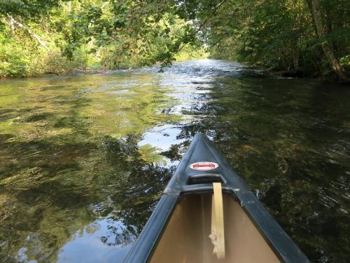 美登里橋をさらに下りましょう。<br /><br />上流部は川砂利が敷き詰められたような浅い川床で、サラサラとした流れですが、だんだんと深く、流れも速くなってきます。 早瀬もあります。 その様はぜひとも動画でお見せしたいところです。<br />