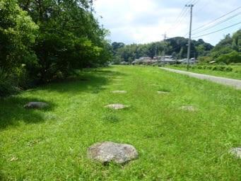 観世音寺はかつてもっと広大な伽藍を持つ寺院だった。<br />今の敷地の外に礎石が残っていたし、この道の向こうにも遺構があるらしい。