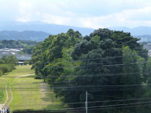 築かれた土塁に樹木が生い茂っていて、それが切れ切れにずっと続いていた。<br />堀も深い。西鉄に乗っていると下大利駅を過ぎたころ車窓からも見えた。