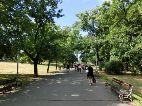 プラハ中央駅前は広い公園(ヴルフリツキ公園)になっており緑が美しい。しかし、ドイツの公園とは明らかに雰囲気が違う。ベンチには浮浪者や無職者と思われる人達があちこちにたむろしている。一瞬、緊張感が走る。