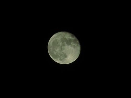 スーパームーン<br /><br />ベトナムのダナン以来です。 スーパームーンとは月が地球に一番近くなるため14%大きく、30%明るくなるのです。 月の大きさが違って見えるのは勘違いではなく、実際毎日変わっていきます。 それは月食に皆既食と金環食があるのでもわかります。(月の軌道は楕円なのです)<br /><br />さてスーパームーンを最後に帰京します。<br />次は湖東三山あたりの紅葉に出かけるとしましょう。 再見!<br /><br /> ※ダナンのスーパームーン http://4travel.jp/travelogue/10667101