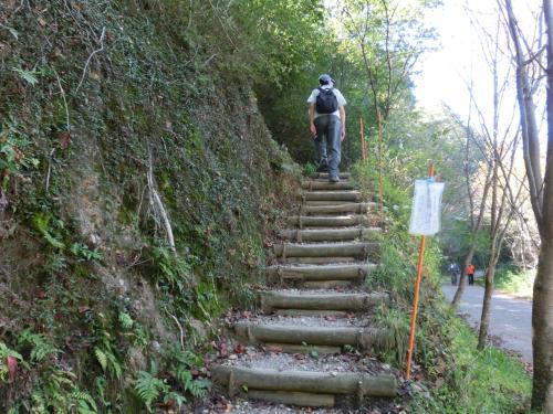 車道を離れて登山道へ。