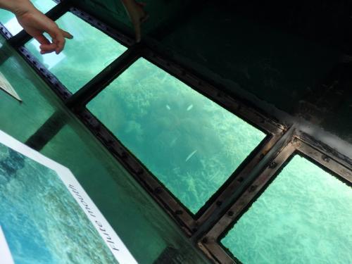 やはりグラスボートは観光客に人気で、なおかつ大半は外国人観光客です。<br />イメージとは少々違いましたが…まぁ良い経験ということで。